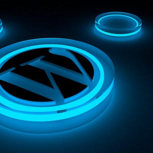 Logo Wordpress développé par Farouk Nasri agence web Wordpress Paris
